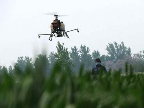 烟农玩转高科技,用无人机喷施农药