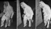 偷车贼通过增强室内遥控钥匙信号去盗窃汽车